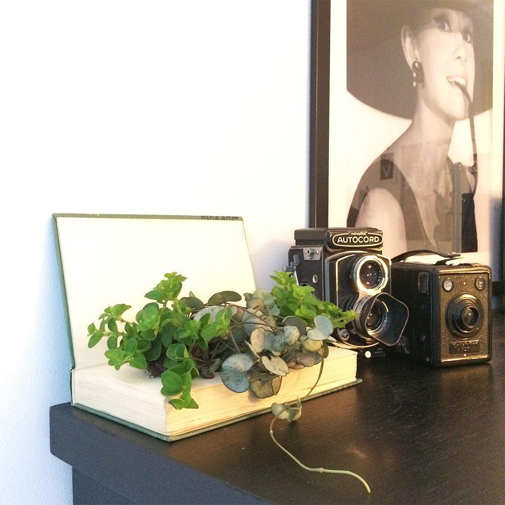 Designparken-blogg-bokplante-diy-project