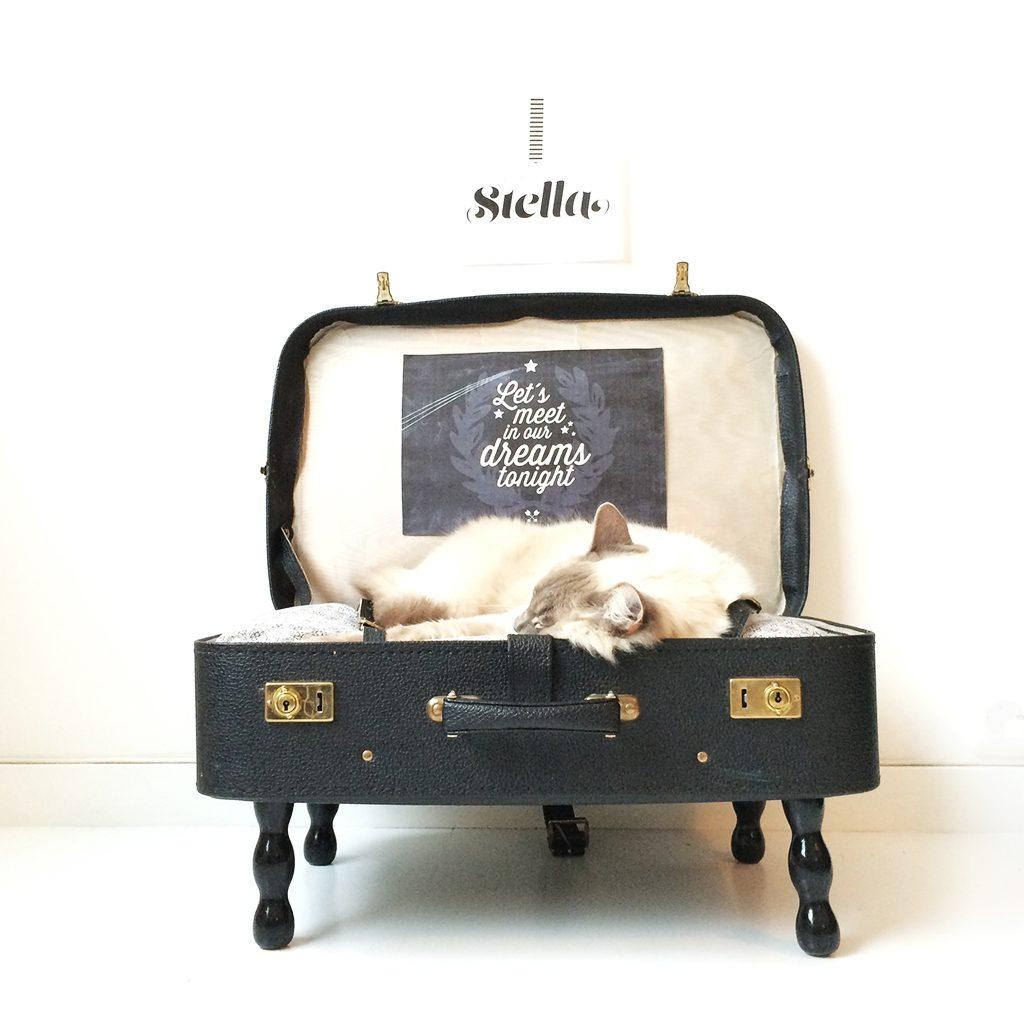 Designparken-blogg-catbed-diy-postere